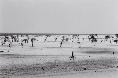 Site of the now dried Lake Faguibine, Mali, Africa