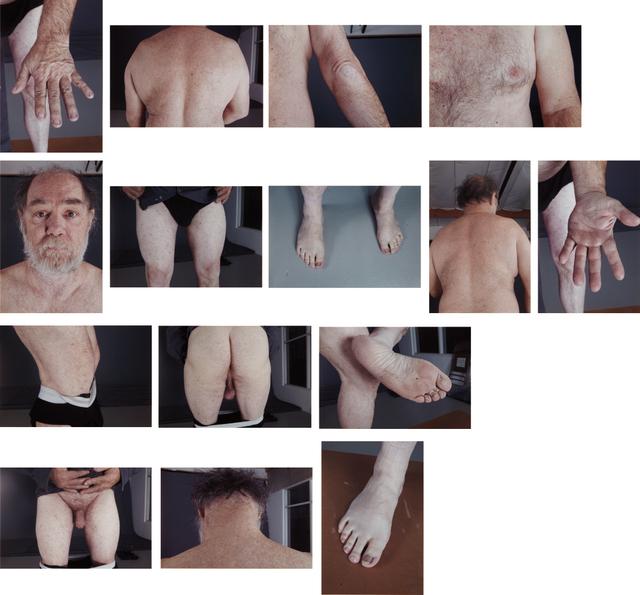Paul McCarthy, 'Peter Paul Skin Sample', 2005, Phillips