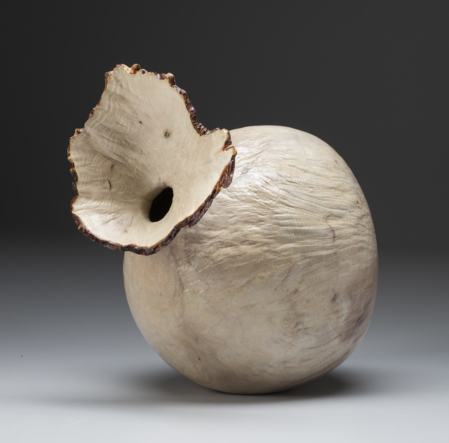 , 'Bleached Madrone Burl Flower Pot,' 2018, Wood Symphony Gallery