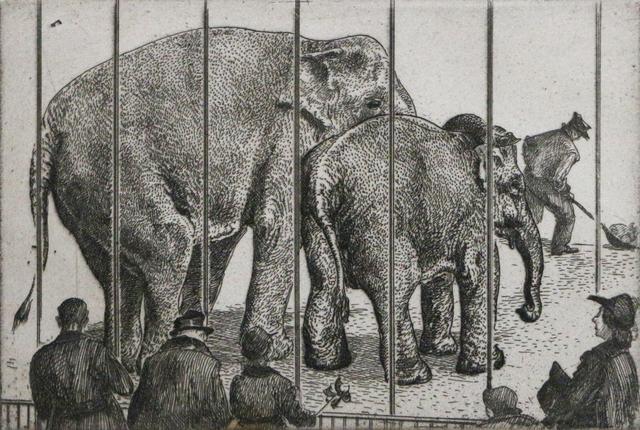 Waldo Park Midgley, 'Elephants at Zoo', ca. 1950, Phillips Gallery