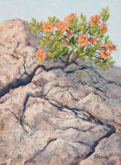 Tracey Maras, 'From the Cracks', 2020, Painting, Pastel, Springfield Art Association