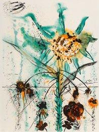 Sun Goddess Flower