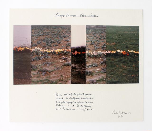 Peter Arthur Hutchinson, 'Chrysanthemum Line Series',  1971, Gaa Gallery
