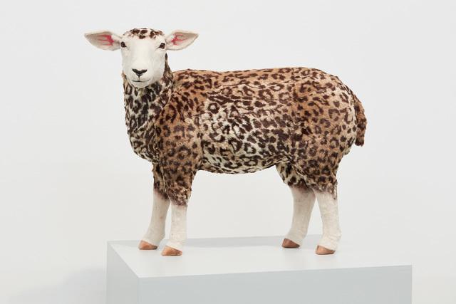 , 'Leopard Sheep,' 2017, Kukje Gallery