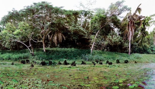 , 'Semendua (RD Congo),' 2005, Baró Galeria