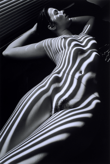 , 'Nu Zebre, New York 1998,' 2005, Odon Wagner Contemporary