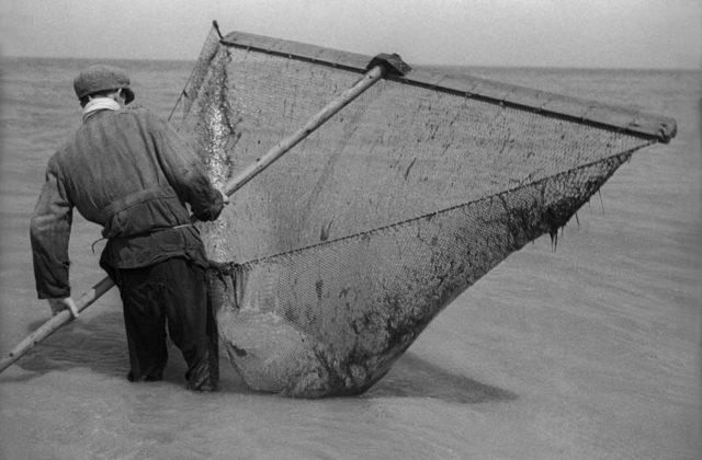 , 'Fisherman with Net,' 1935, Rosenberg & Co.