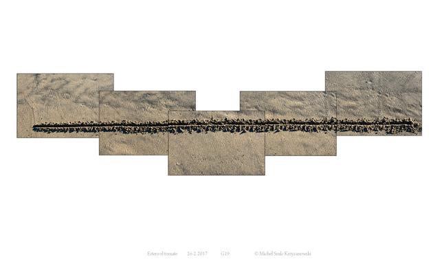, 'Sequence G19 - Estero El Tomate,' 2017, Eduard Planting Gallery   Fine Art Photographs