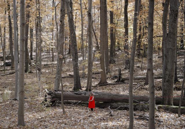 , 'Marking Her Trail,' 2013, Susan Eley Fine Art