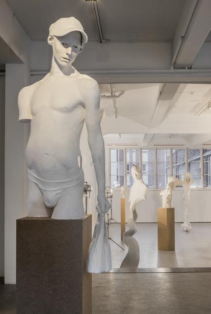 , 'Public display of emotions,' 2016, Andréhn-Schiptjenko