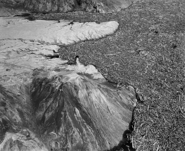 , 'Aerial view: shattered logs in south end of Spirit Lake. Four miles north of Mount St. Helens,' 1982, Etherton Gallery