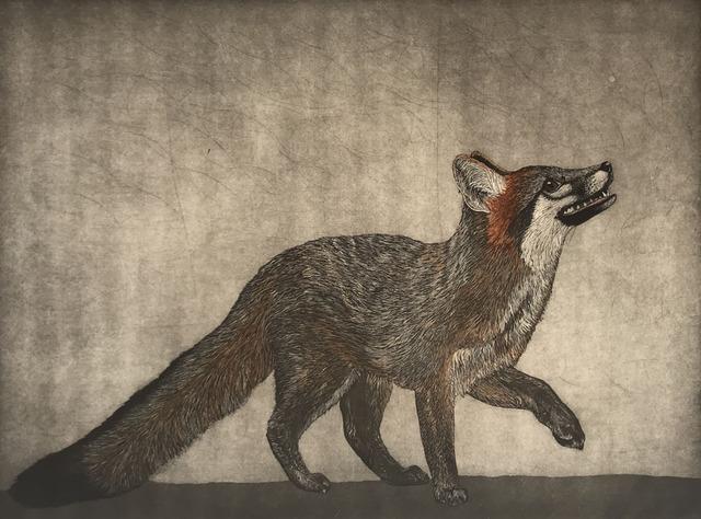 , 'Gray Fox,' 2018, Wally Workman Gallery