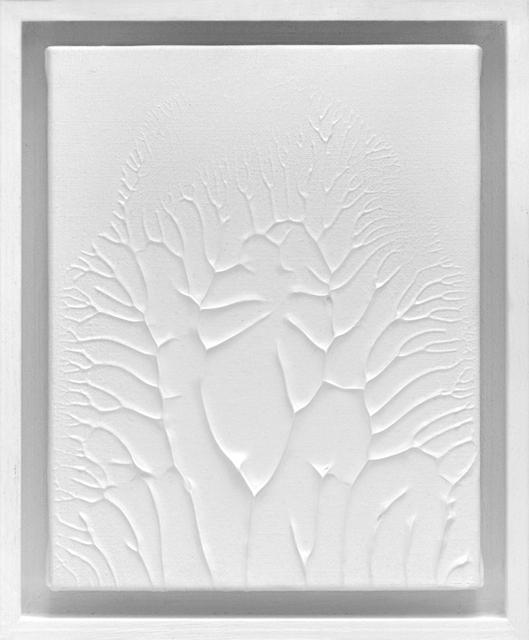 , 'Peinture Blanche F2 #1,' 2016, 22,48m2