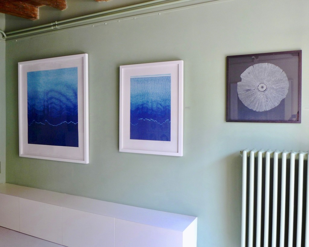 "Installation view of ""Echo Waves"",  ""Everything Nothing"" and ""Amanita Phalloides""."
