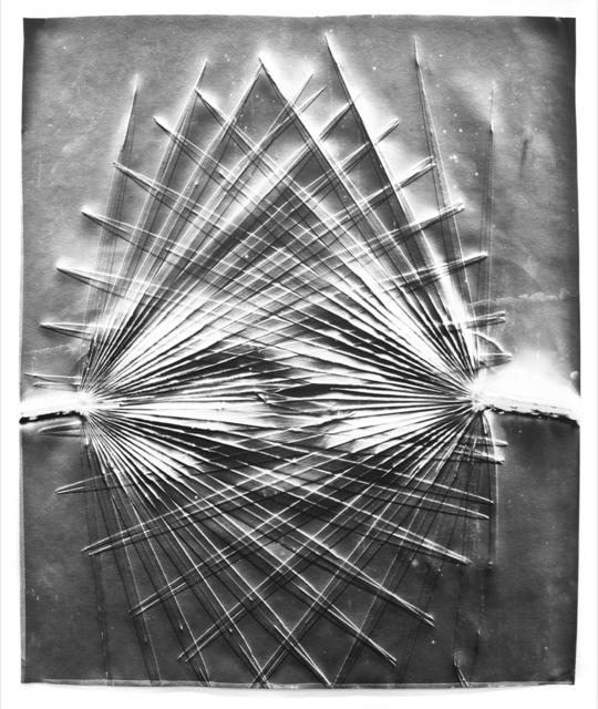 , 'Palms #5,' 2017, Von Lintel Gallery