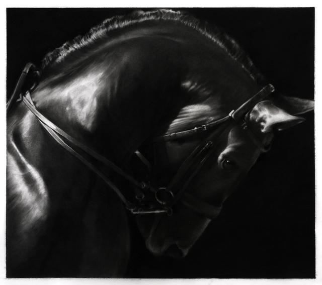 Robert Longo, 'Study Of Horse', 2019, Metro Pictures