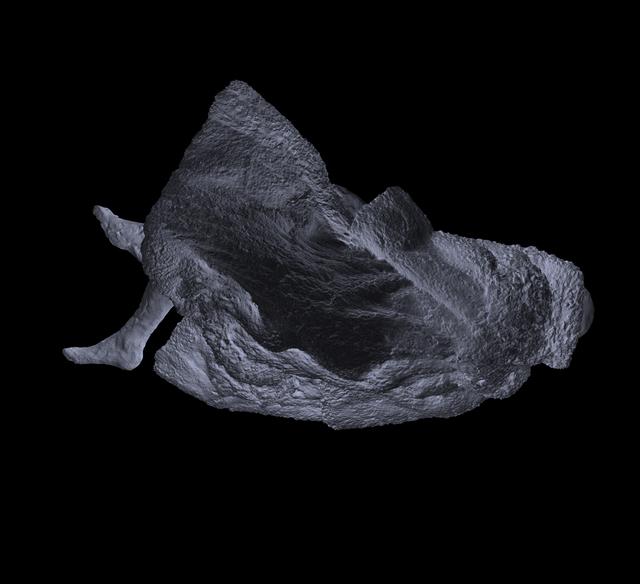 , 'Fury, lying,' 2019, Galerie Forsblom