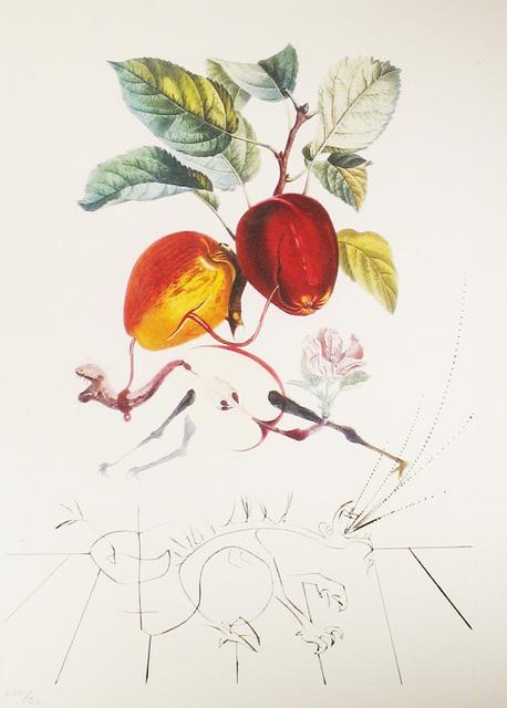 Salvador Dalí, 'Apple-Eve's Apple', 1969, DTR Modern Galleries