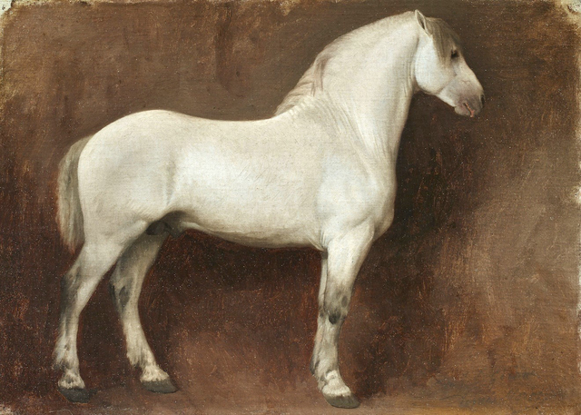 , 'Study of a White Horse,' , Didier Aaron