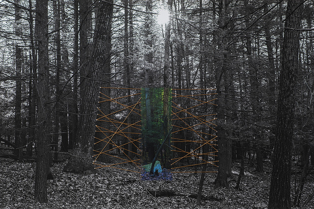 , 'Forest and Lines, Gardiner, New York ,' 2015, Brownie Project