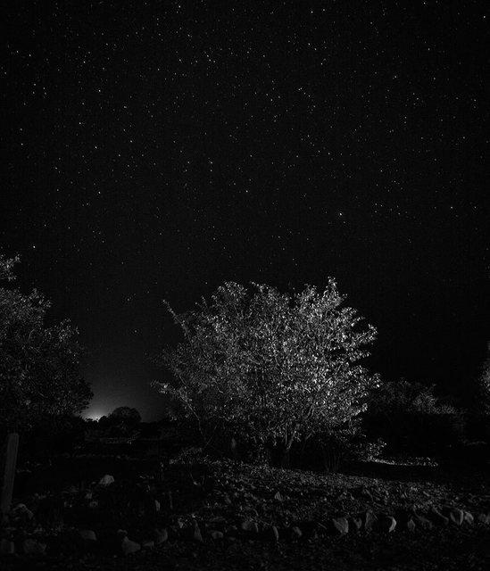 , 'Panta Rey. Noche,' 2014, Mondo Galería