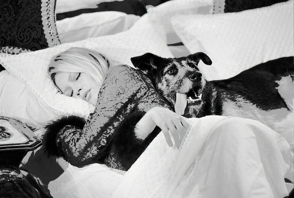 Brigitte Bardot with dog on set of 'Les Novices', 1970
