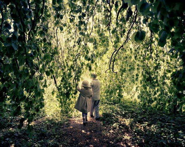 , 'Willow Tree, Potsdam, 2012,' 2012, Polka Galerie