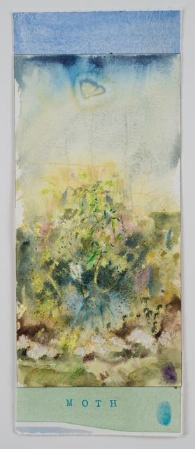 , 'Moth,' 2015, Reynolds Gallery