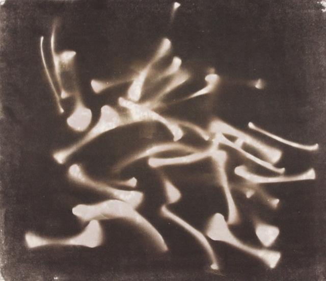 ", 'Chicken Bones ""Seeing in the Dark Series"",' 1999, Aaron Galleries"