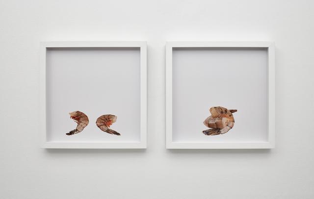 , 'shrimp and shrimp, shrimp on shrimp,' 2015, Klowden Mann