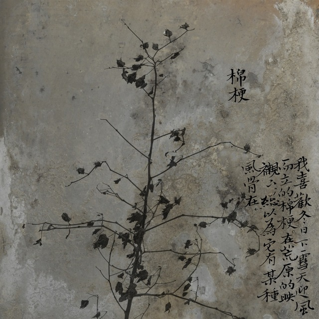 , 'Cotton Plant,' 2012, see+ Gallery