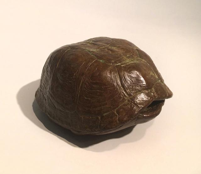 J. Clayton Bright, 'Turtle Shell', Somerville Manning Gallery