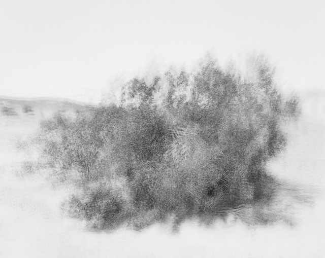 , 'Wind,' 2014, Gallery Luisotti