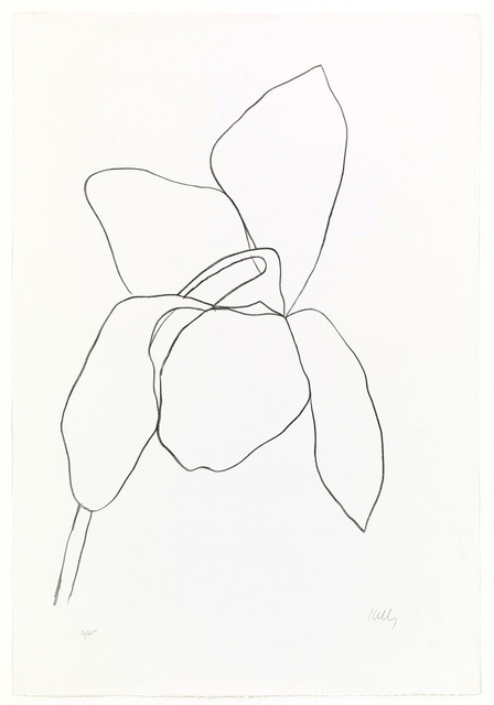 Ellsworth Kelly, 'Cyclamen I', 1964-65, Brooke Alexander, Inc.