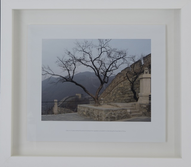 , 'There's no place called home (Great Wall),' 2005, Museum of African Design (MOAD)