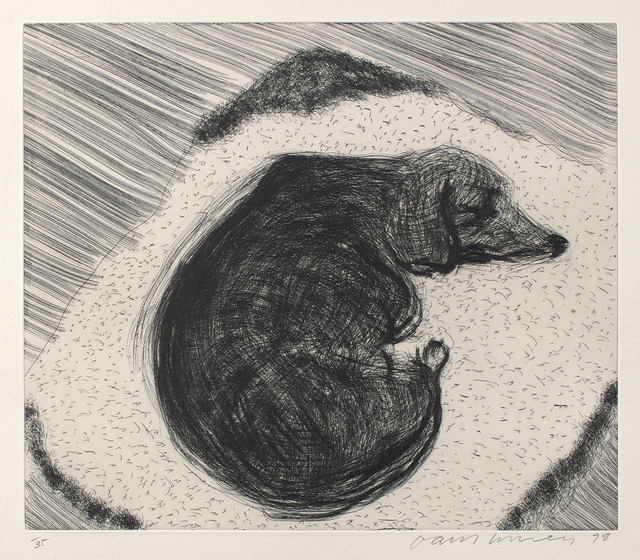 David Hockney, 'Dog Etching No. 3, from Dog Wall', 1998, ARCHEUS/POST-MODERN