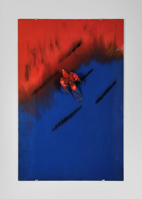 , 'Karaoké (Lorius domicellus, Nouvelle-Guinée),' 2015, Galerie Mitterrand