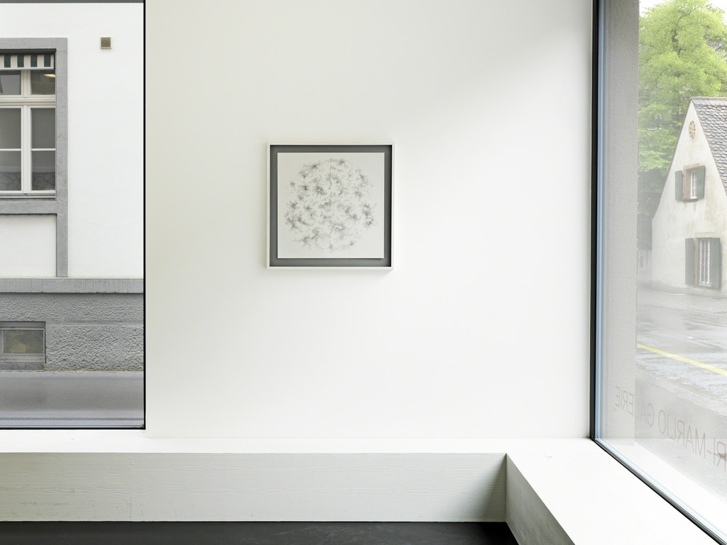 Installation View 5: Tobias Putrih, C/1L, 2009, Ink on paper