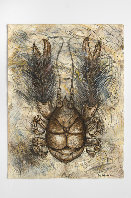 , 'Yeti Crab (Kiwa hirsuta),' 2016, Edward Cella Art and Architecture