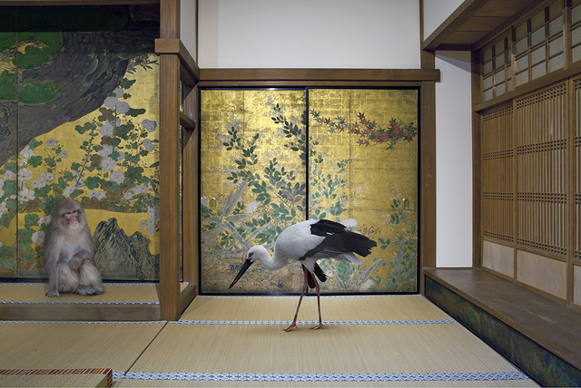 , 'Cultivating Happiness, Chishaku-in Temple, Kyoto  ,' 2015, Galerie Les filles du calvaire