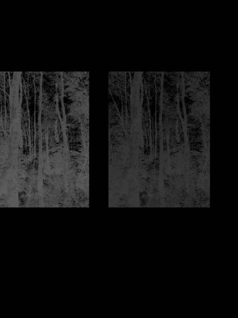 , 'Inverses 2,' 2012, Galerie Nikolaus Ruzicska