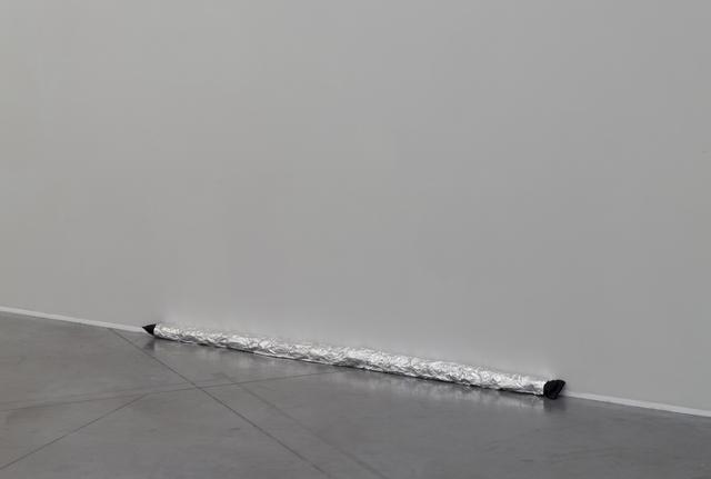 , 'Protective Door Snake,' 2016, Tatjana Pieters