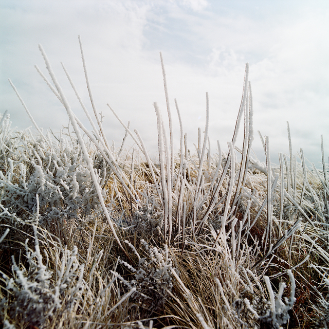 , 'Frozen 1. February 2014. Albany, Texas,' 2014, Barry Whistler Gallery