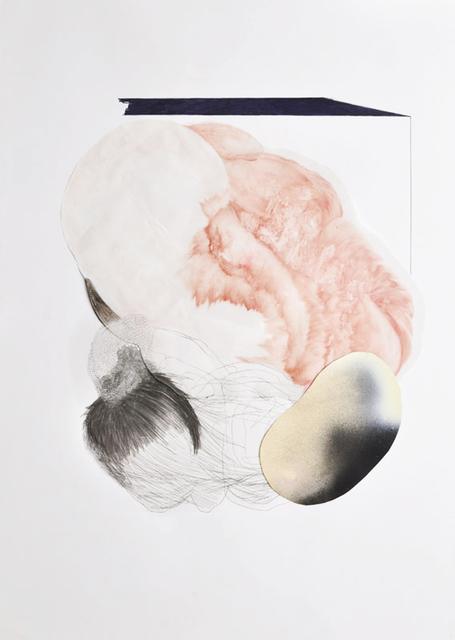 , 'Ecosystem rysunek kolaż,' 2014, Archaeology of Photography Foundation