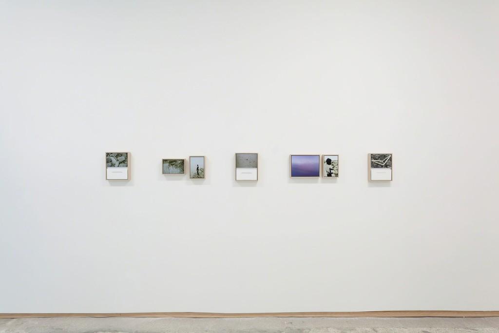 Installation view, Jamilah Sabur: The Rhetoric of the Living at Emerson Dorsch, through April 6, 2018