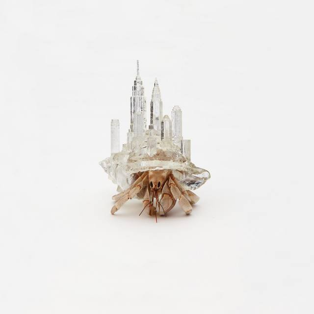 """, 'Why Not Hand Over a """"Shelter"""" to Hermit Crabs? -Border-,' 2010/2019, MAHO KUBOTA GALLERY"""