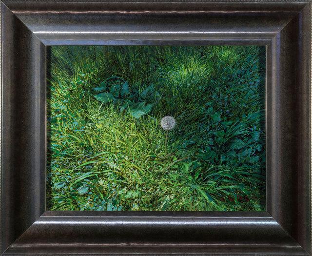 Justin Kaufman, 'Dandelion III', 2019, Painting, Oil on Panel, ARCADIA CONTEMPORARY