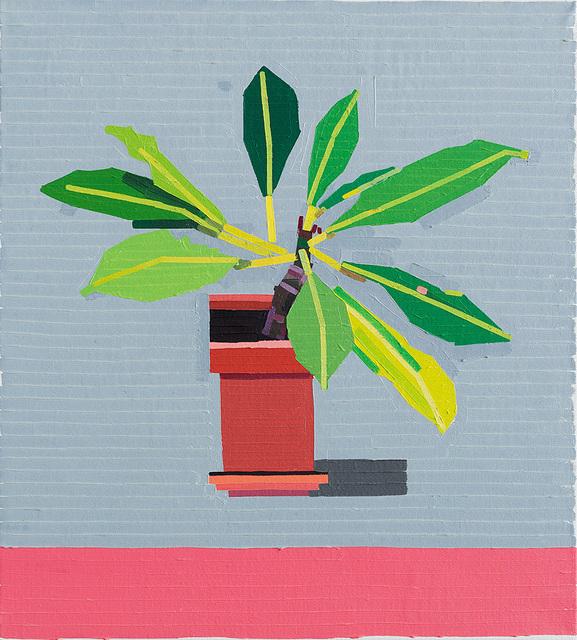 , 'Young Plant Balcony,' 2017, CONRADS