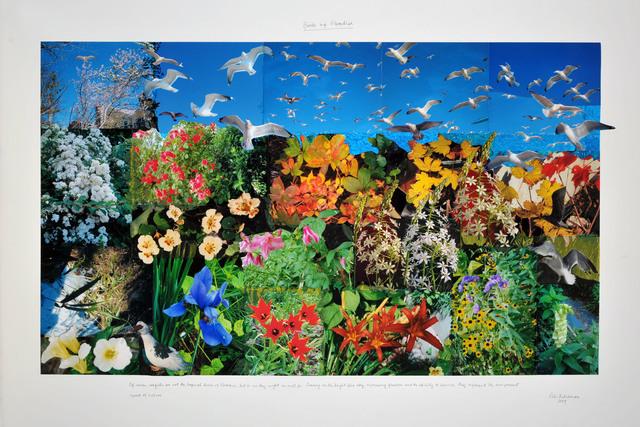 Peter Arthur Hutchinson, 'Birds of Paradise', 2009 , Freight + Volume