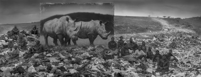 , 'Wasteland with Rhinos,' 2015, Fahey/Klein Gallery
